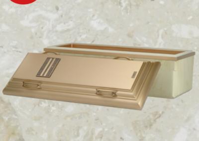 Voûte de cercueil de béton renforcé de haute qualité avec carapace et couvercle de bronze - Cercueils Magog